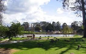 El-Estero-Park