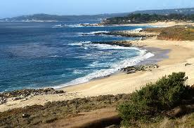 Carmel-River-State-Beach